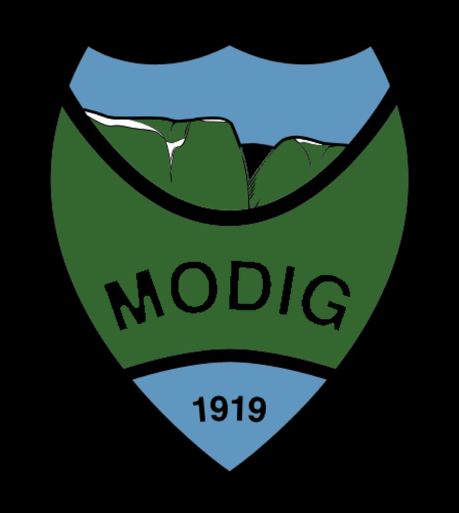 Bilderesultat for il modig logo