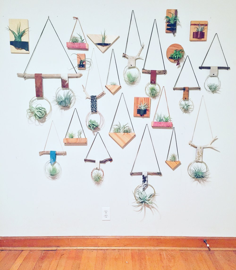 on the wall - Found sticks, shaped wire and air plants create the ultimate urban bohemian look. Hanging in a window or suspended from a ceiling, these air plant mobiles will have you dreaming.