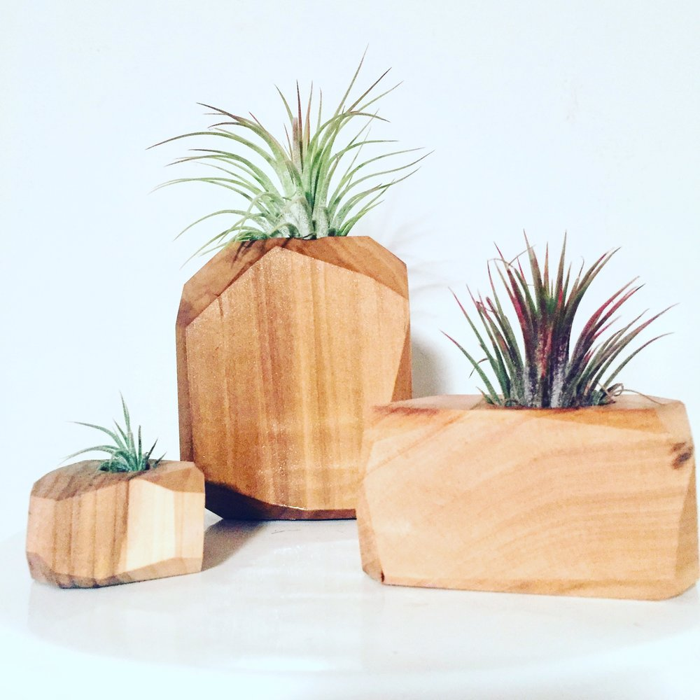 Desk/Shelf Decor - Perfect for a desk, kitchen window, bathroom shelf or any place with a ledge. These add a woodsy, urban jungle vibe anywhere.