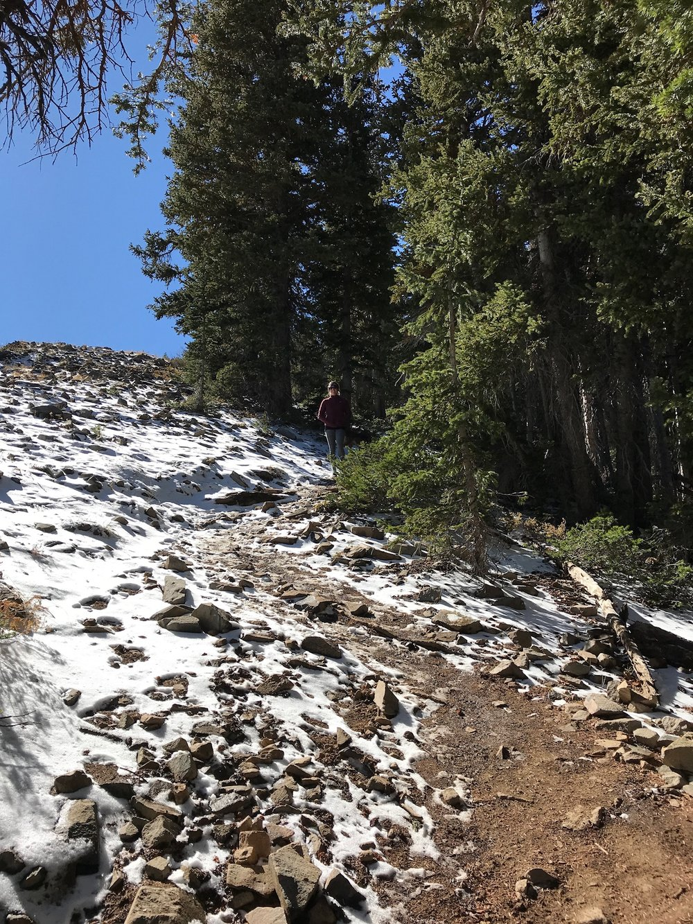 The trail begins with a steep uphill. If this seems too challenging this might not be a great trail for you, it continues towards for 1.5 miles without any reprieve and in the Fall more than half of the trail was covered with a foot of snow.