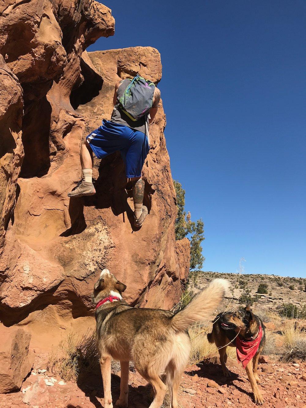LWHC Ry climbing.jpg