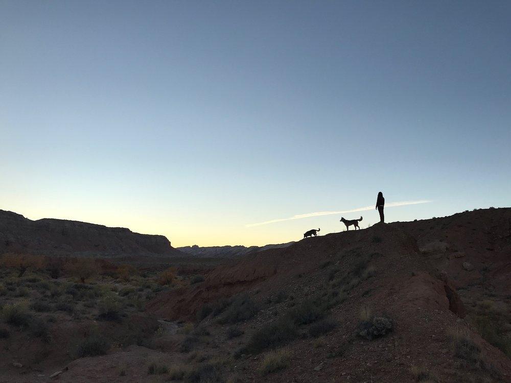 Wild Horse Sunset.jpg