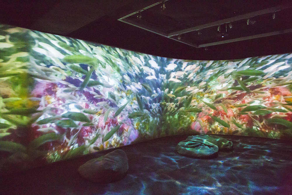 "Deep Ocean - The ""Deep Ocean"" soundscape was designed to accompany a video installation created by artist Olivia Ting and inspired by Cordell Bank's underwater life. The Soundcloud sample below combines diver interviews with sections of the deep ocean soundscape."