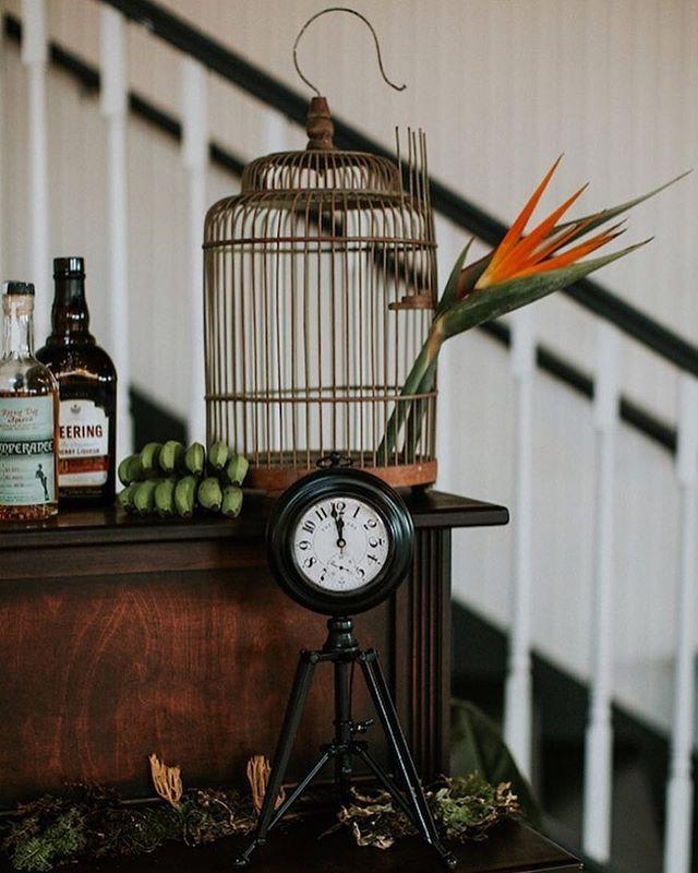 Culling through years of my work and realizing there was a time I took more risks & just allowed creativity to flow through me. Two birds of paradise in a birdcage?! Damn. 😍