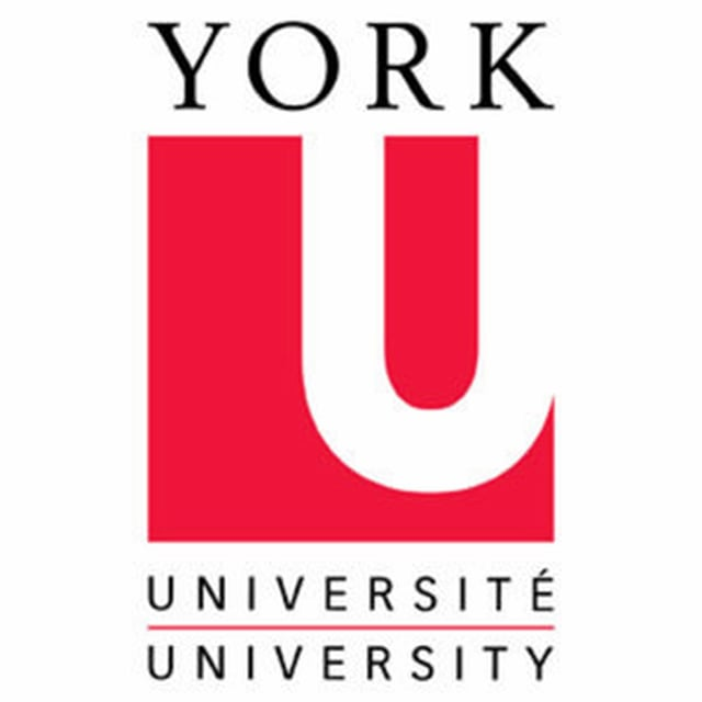 York University Children's Study Department is Nai's research partner