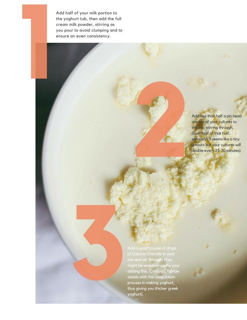 DIY HOmemade Yoghurt-2 copy.jpg