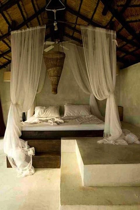coqui-bed1.jpg