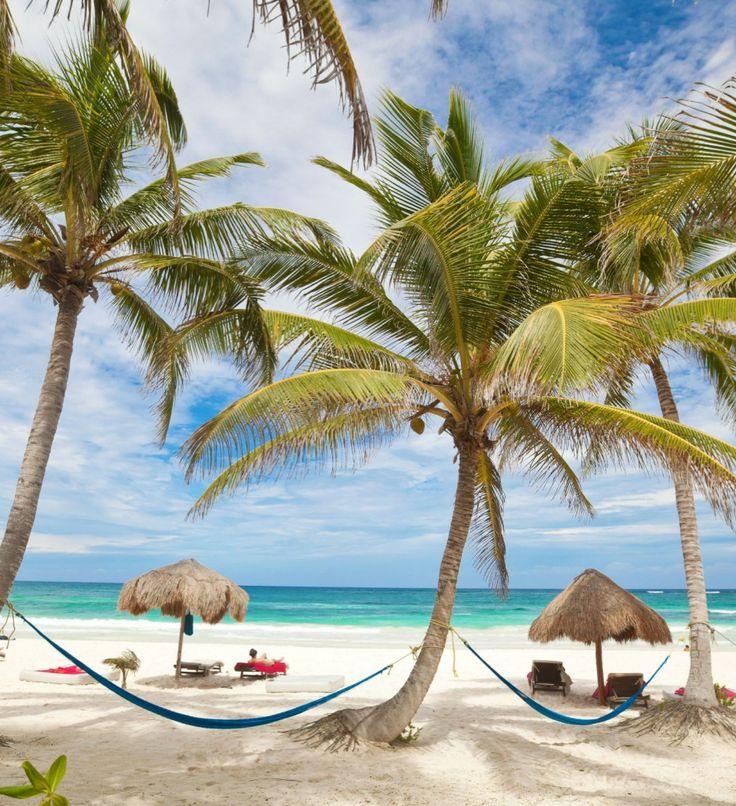 tulum-palms.jpg