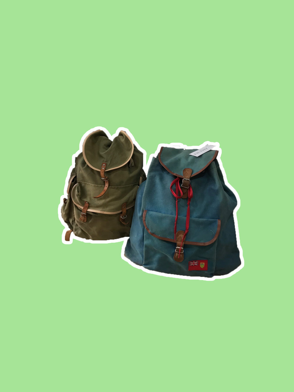 two-backpacks2.jpg