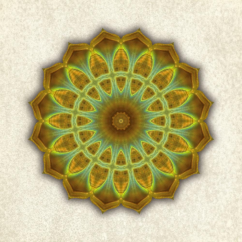 Mandala-green-anemone_6-6_1500w72r.jpg