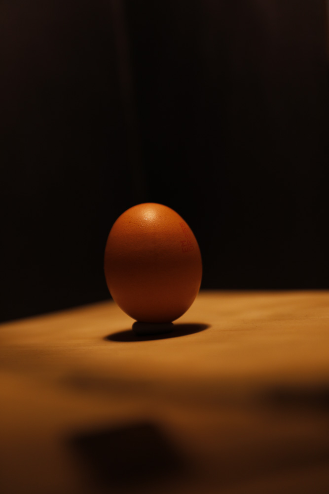 Egg - Back.jpg