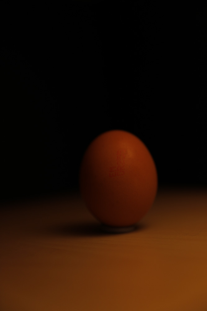 Egg - Diffuse Front.jpg
