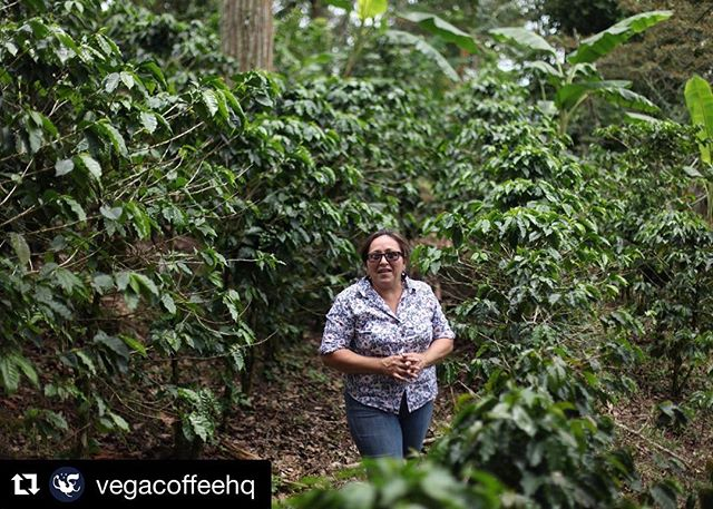 """#Repost @vegacoffeehq with insights from GFE farmer Alexa Marin #womenincoffee ・・・ """"Drinking a cup of coffee is not just a great pleasure — it also represents all of the achievements that go into making it. I believe that for consumers to promote gender equity within the coffee chain, they must know who produces their coffee, and the work that goes into making it. When consumers support organizations that promote women, we, as farmers, improve our quality of life around family, education, health, well-being, not to mention community development."""" - Alexa Marin ⠀⠀⠀⠀⠀⠀⠀⠀⠀ ----- ⠀⠀⠀⠀⠀⠀⠀⠀⠀ Alexa Marin is a member of the Ramon Sevilla cooperative. The Ramon Sevilla cooperative is part of PRODECOOP, one of the most prominent second-level cooperatives in Nicaragua. Alexa is a proud board member of PRODECOOP, and coordinator of its gender committee. Alexa also participates in the Grounds for Empowerment incubator program, run by our partners at Emory University's Goizueta Business School."""