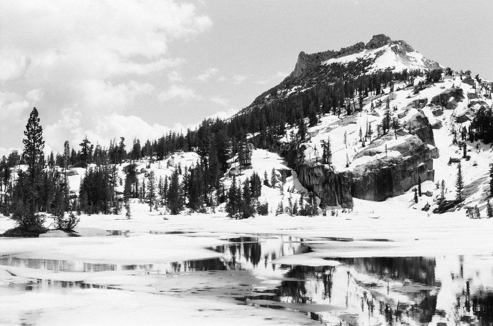YosemiteFP4SM-15.jpg