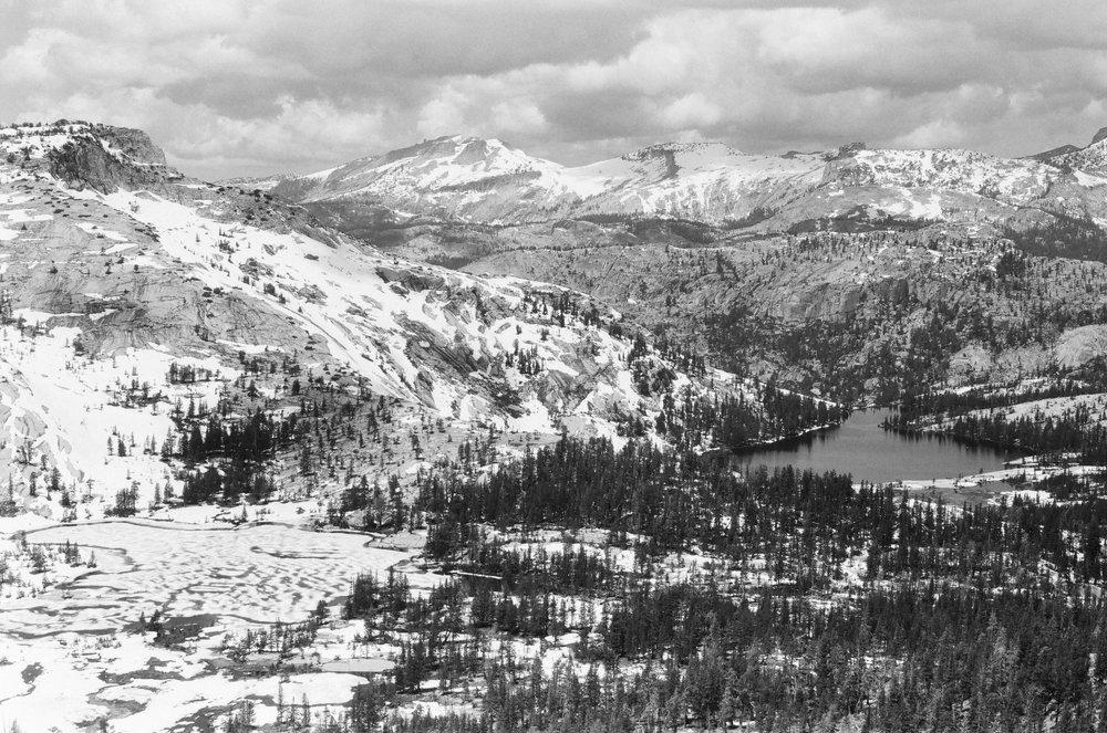 YosemiteFP4SM-8.jpg
