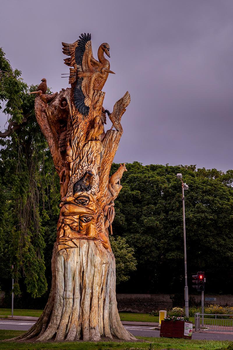 Tree-Sculpture_6280.jpg