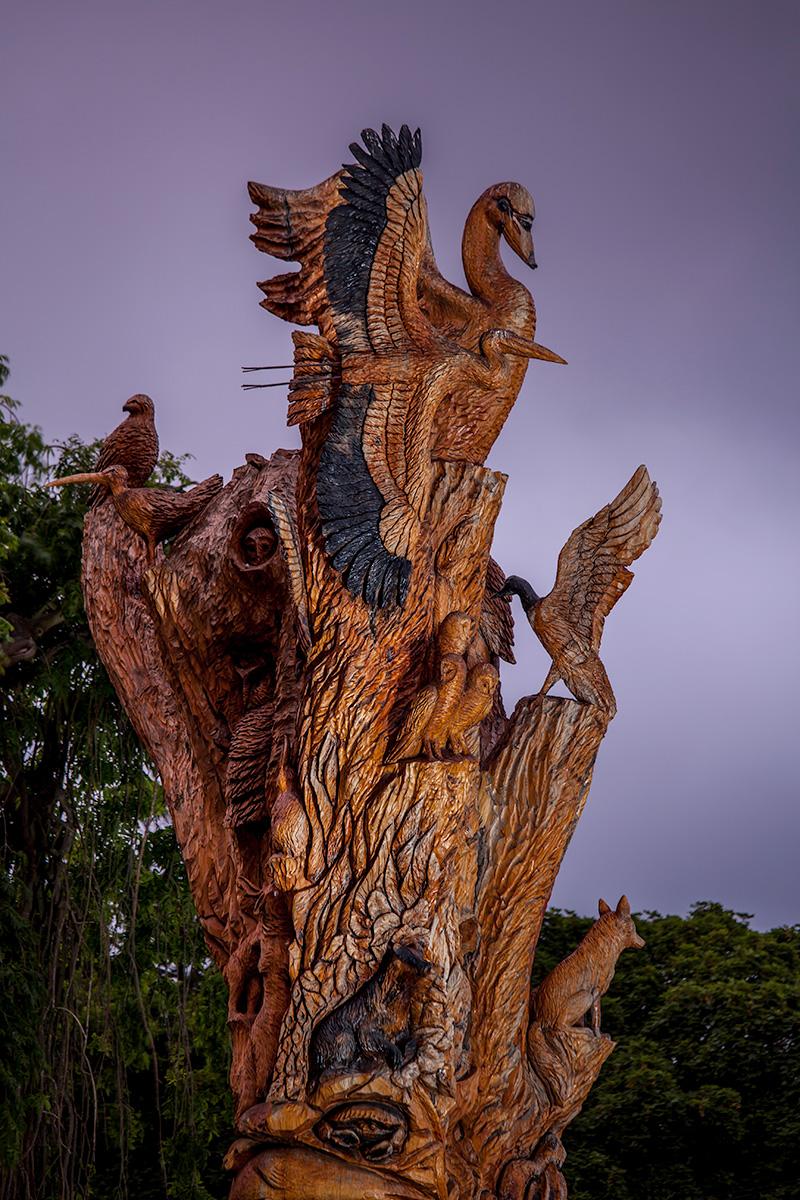 Tree-Sculpture_6289.jpg