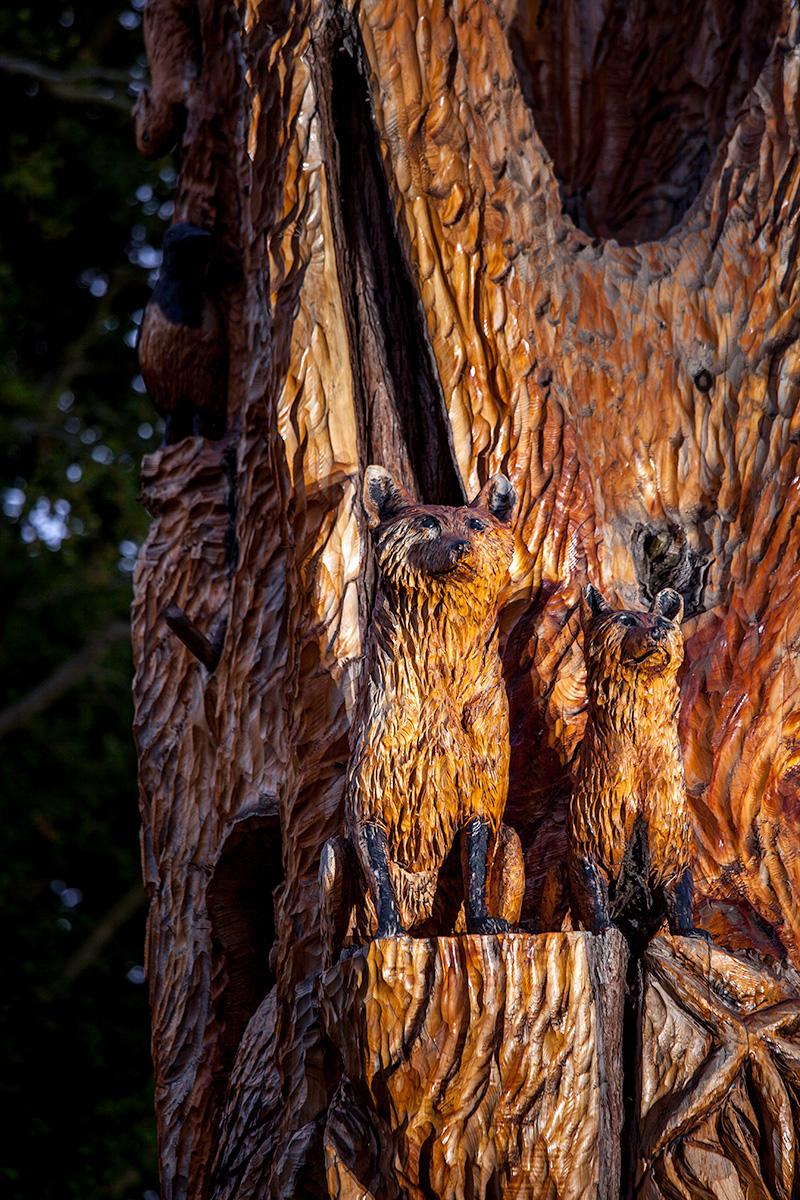 Tree-Sculpture_6312.jpg