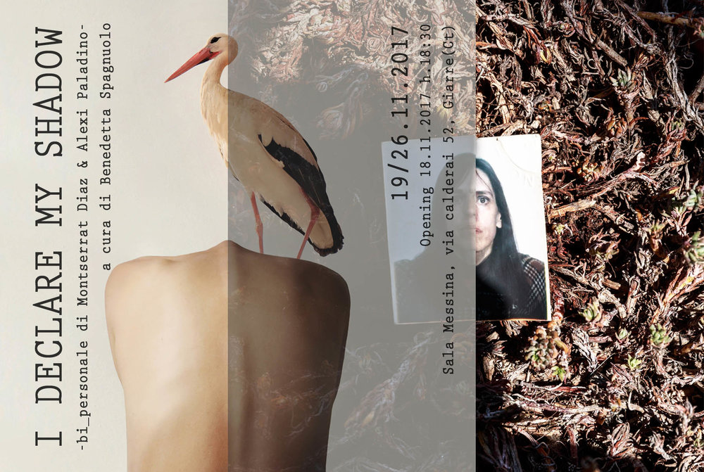 Celeste Prize 2017 - Gallery benefit  Art Works by Alexi Paladino  Curator: Benedetta Spagnuolo  ph. & graphics: Artisti Italiani - Benedetta Spagnuolo