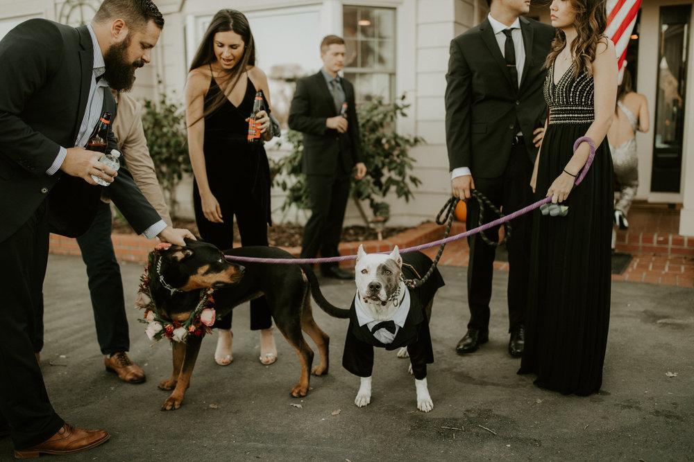couple-intimate-wedding-northern-california-92.jpg