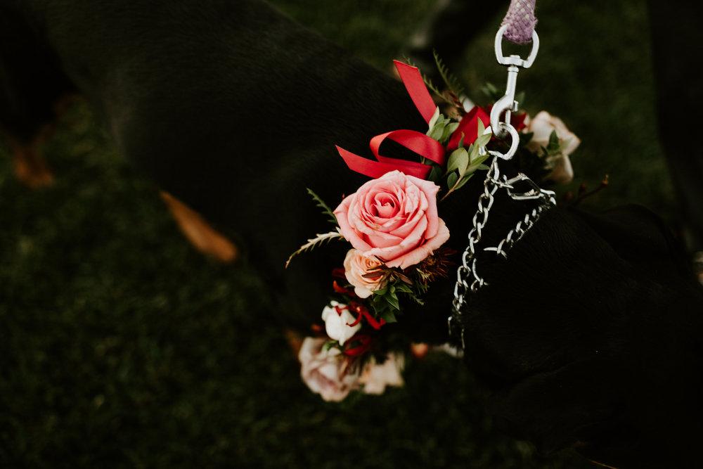 couple-intimate-wedding-northern-california-107.jpg