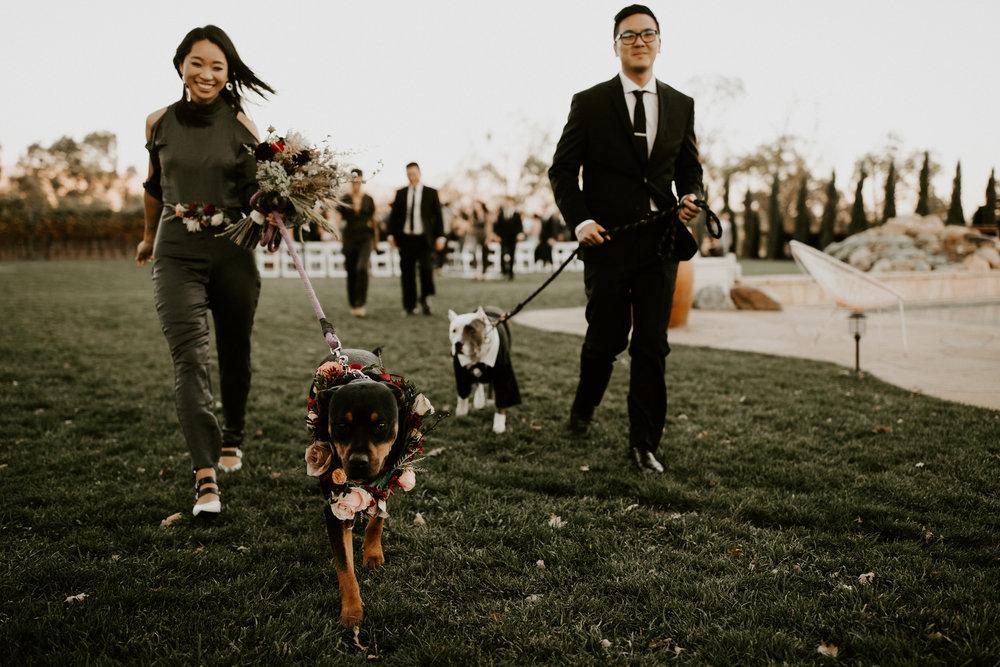 couple-intimate-wedding-northern-california-140.jpg