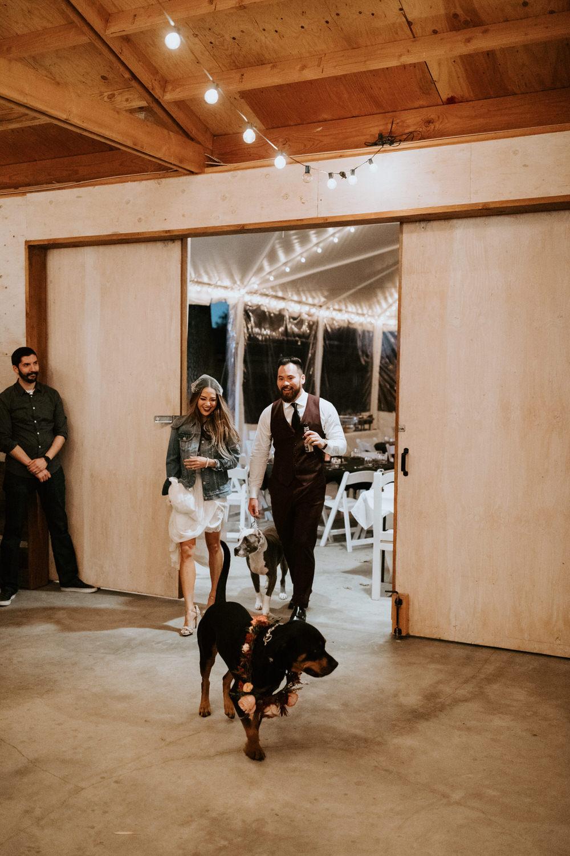 couple-intimate-wedding-northern-california-187.jpg