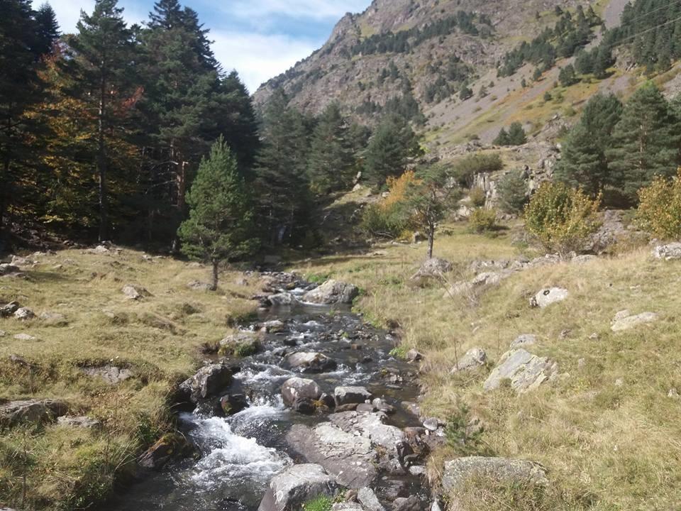 Vallée d'Aure .jpg
