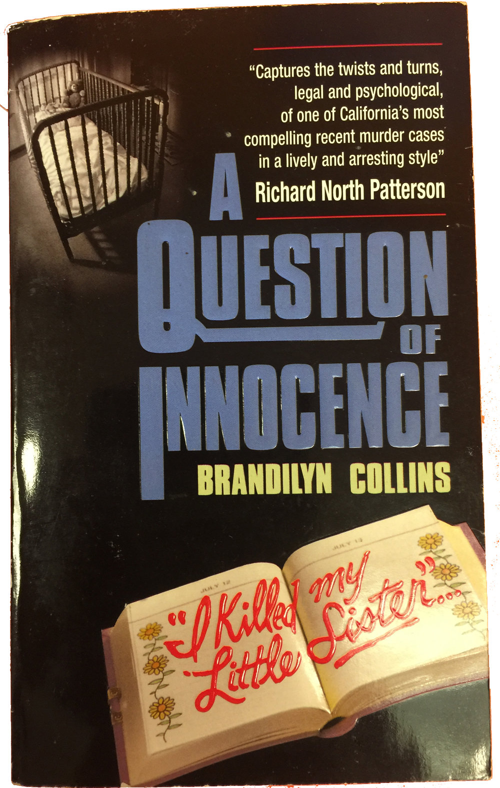 Douglas Horngrad - Criminal Law Attorney - A Question of Innocence.jpg
