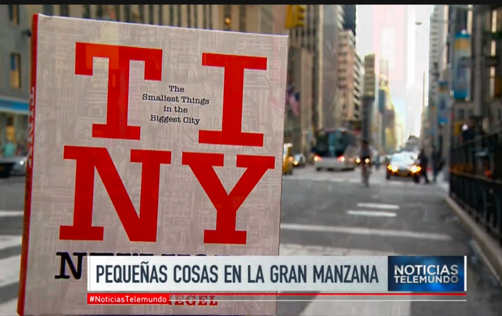 telemundo tiny new york