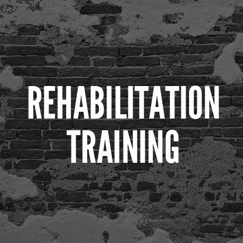 rehabtraining.jpg