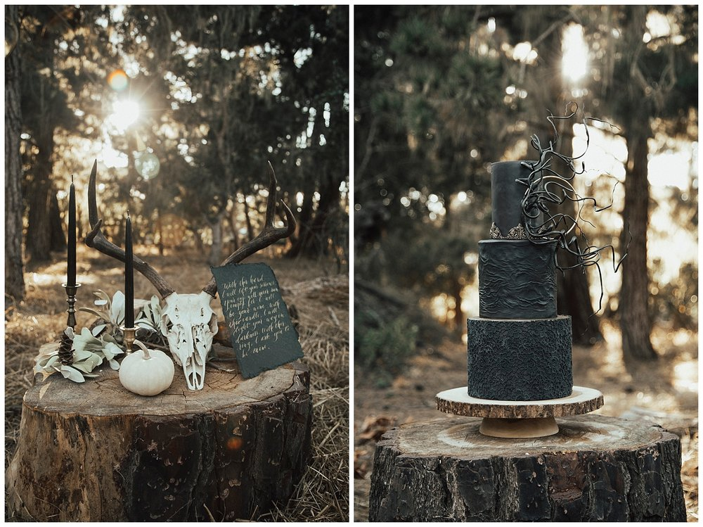 carol oliva photography bay cake design black wedding cake