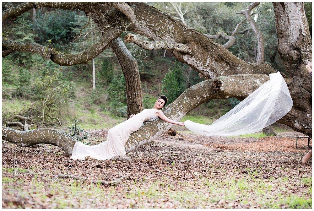badgley-mischka-winter-bride-veil.jpg