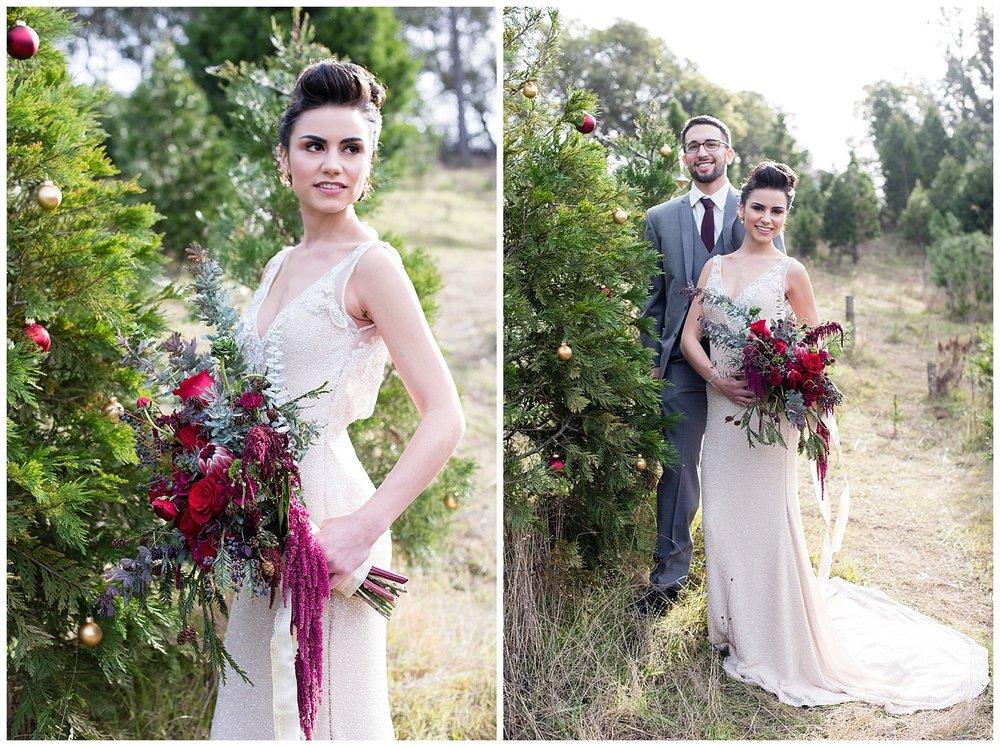 christmas-wedding-tree-farm-california.jpg
