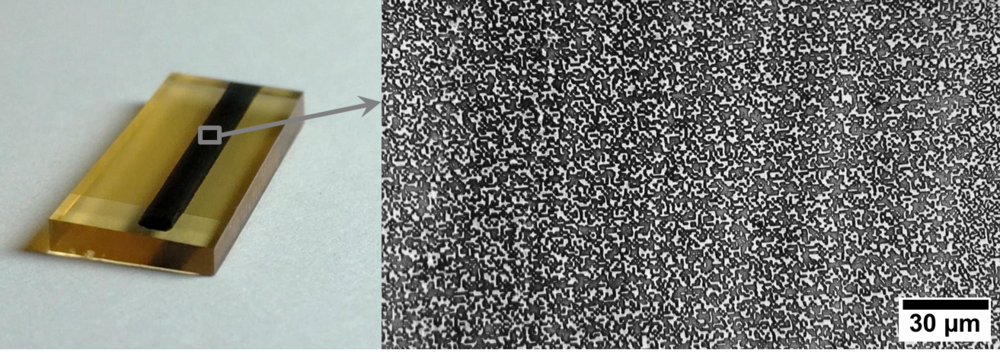 These microSpeckle stamps are pre-inked with black ink that transfers to the specimen for DIC testing.