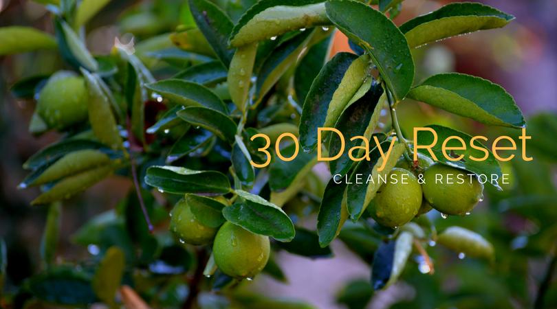 30 Day Reset.jpg