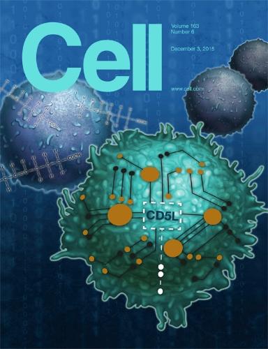 cell163cover.jpg