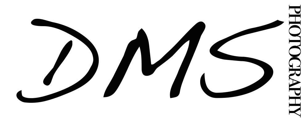 DMS Photo Black Text.jpg