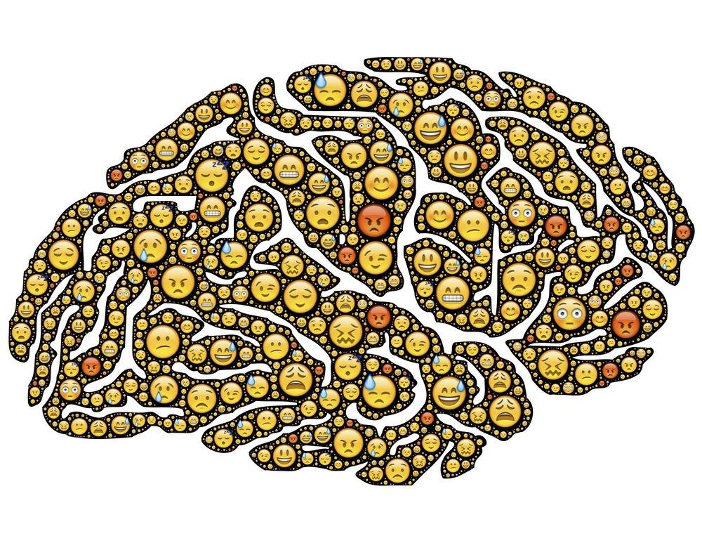 brain-954816.jpg