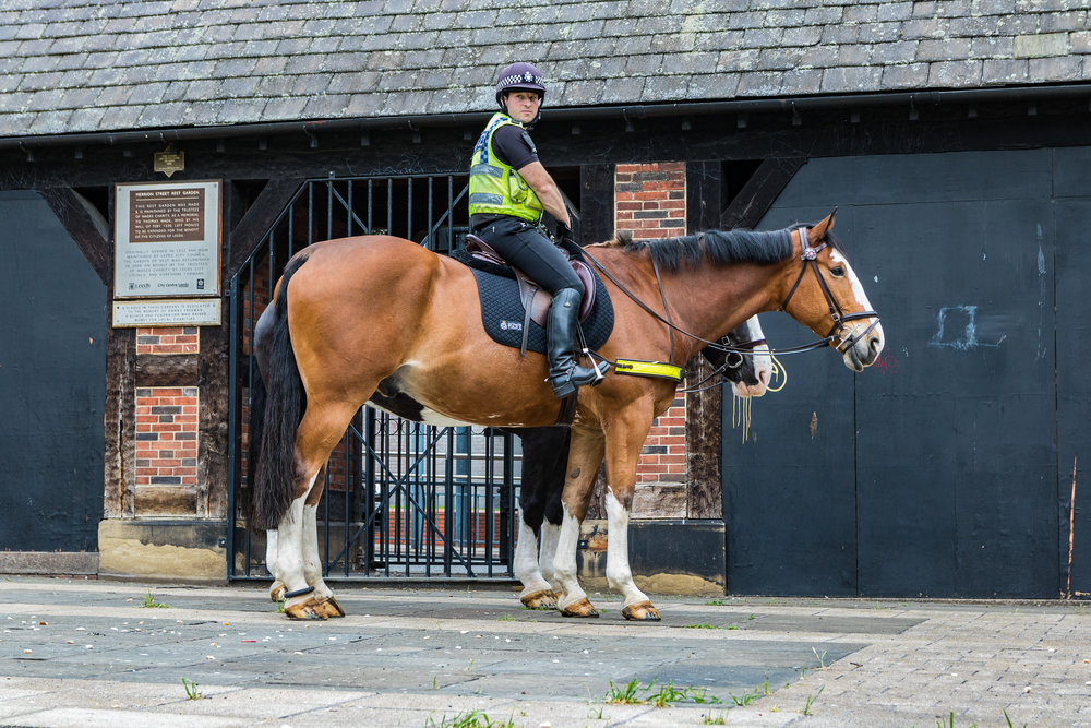 West Yorkshire Police Officer on horseback in Leeds City Centre