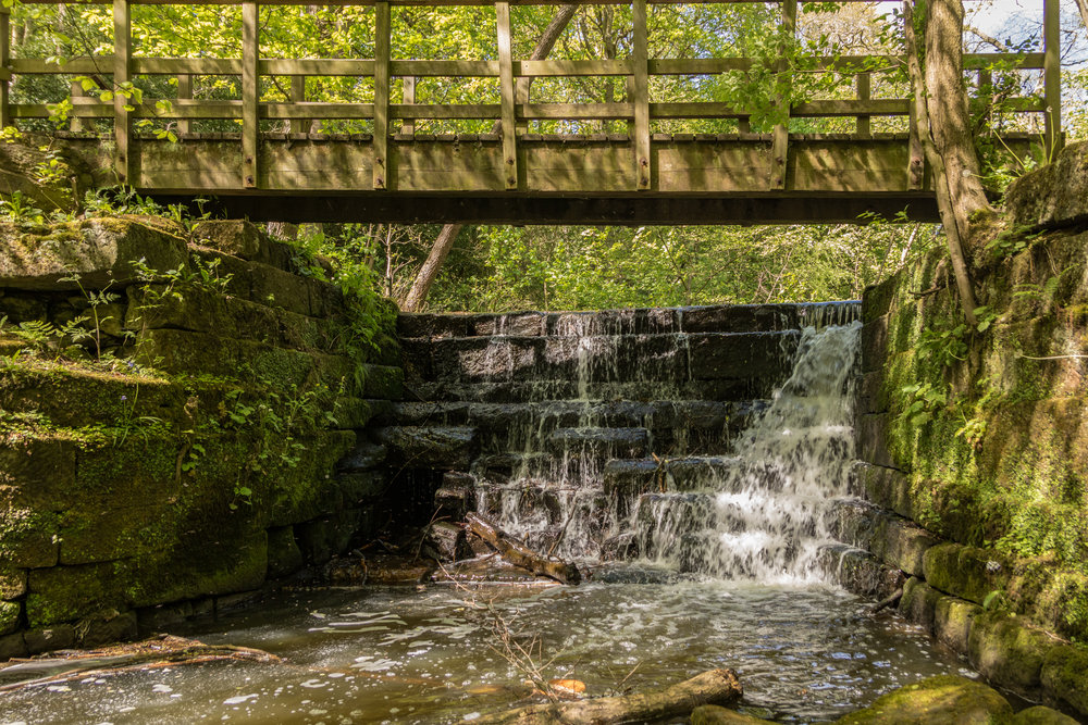 Meanwood Park Waterfall, May 2017