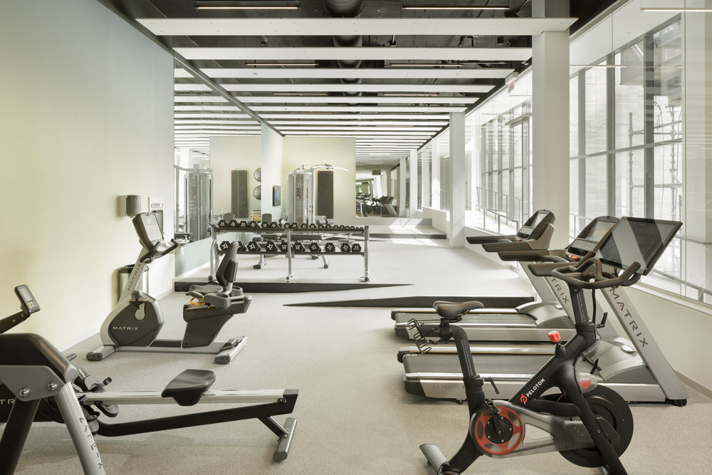 Gym 2_CM.jpg