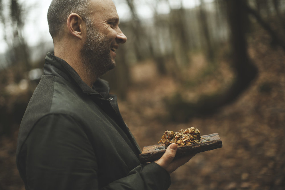 Chef simon rogan with foraged mushrooms during a Range RoverCommercial advertising automotive photography shoot.  off road in the lake district for Land Rover. Packshot. Highlighting the Great British Outdoors, craftmanship, rural life and heritage brands. food photography still life.