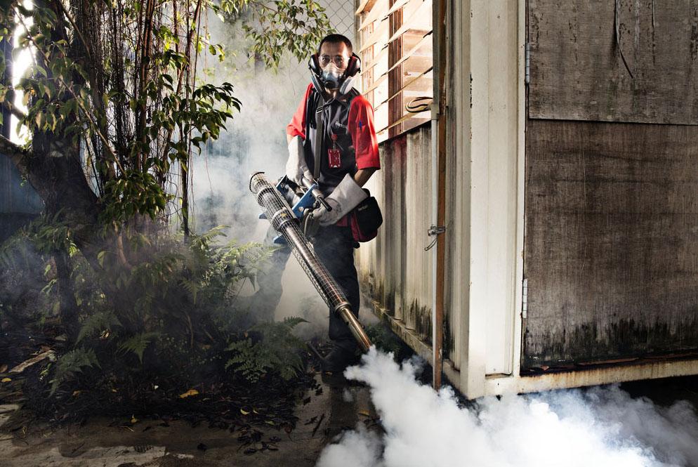 Mosquito fogging, Johor Bahru, Malaysia
