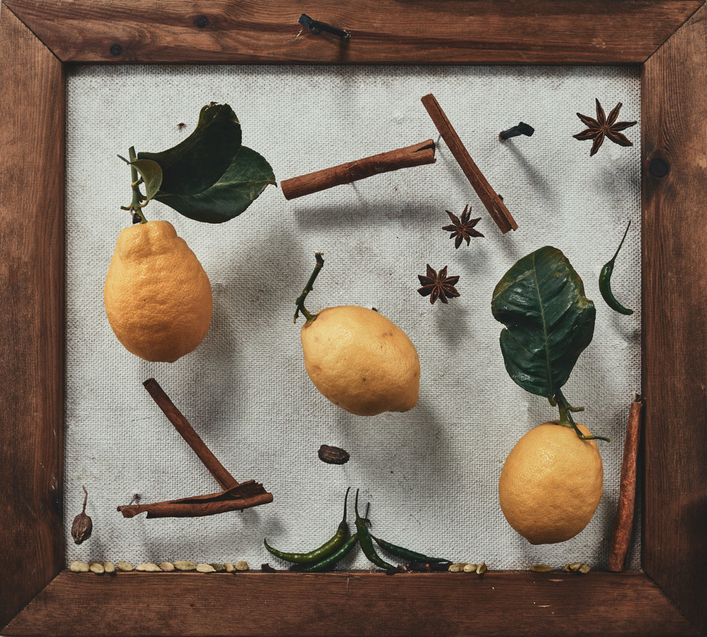 Trompe l'œil still life food photograph of lemon and spices, in the style of an old botanical painting