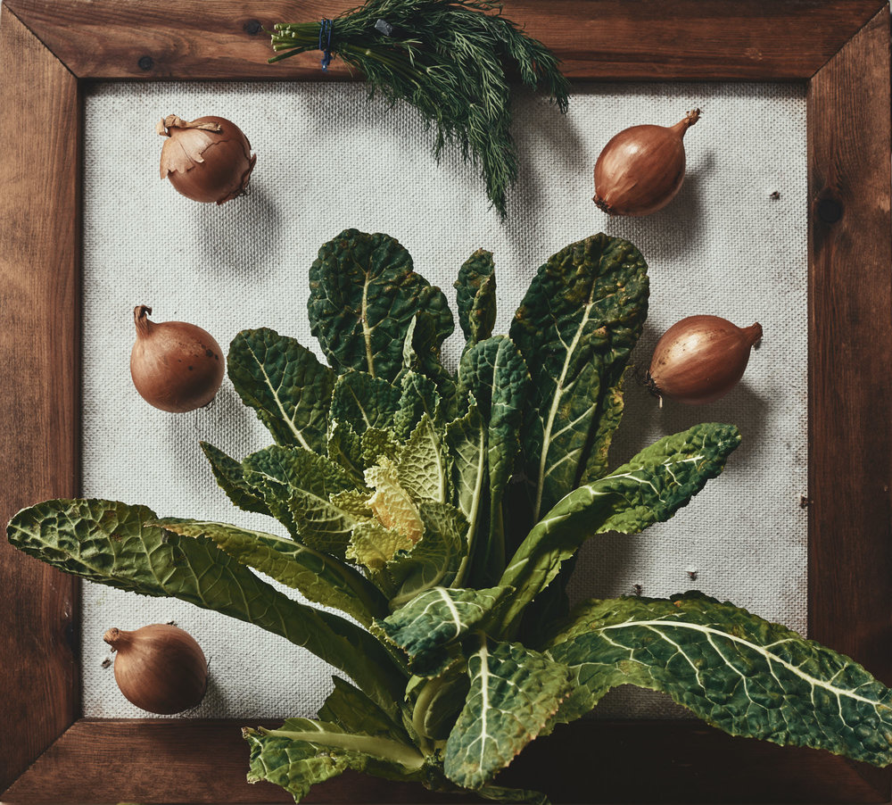 Photographic Trompe l'œil still life food photograph of vegetables in a frame, in the style of an old botanical illustration
