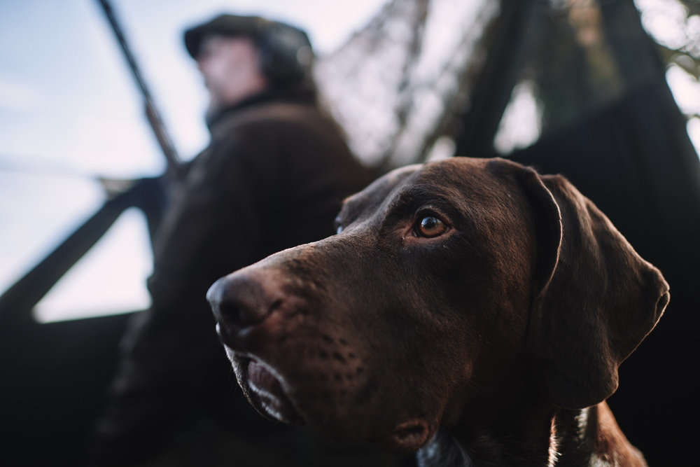 reportage  fieldsports photograpby in north yorkshire by matthew lloyd 3.jpg