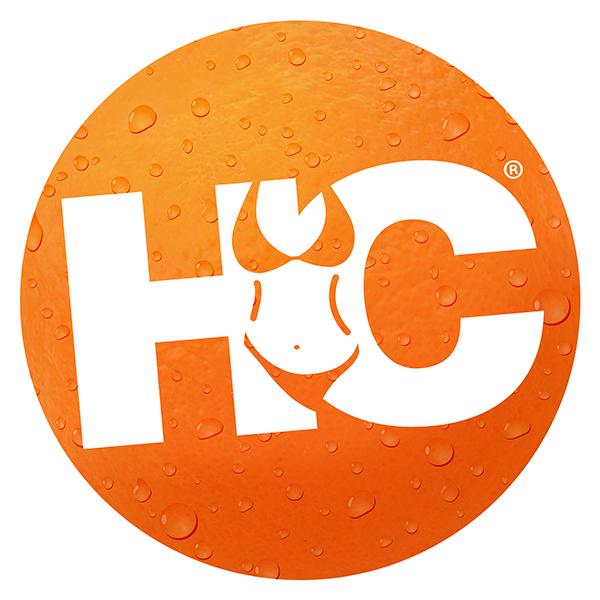 Hooters Calendar Logo