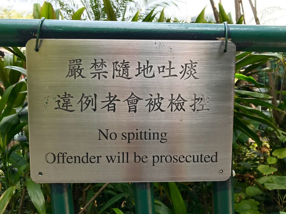 """Many, many """"no spitting"""" signs graced the sidewalks and public spaces in Hong Kong."""