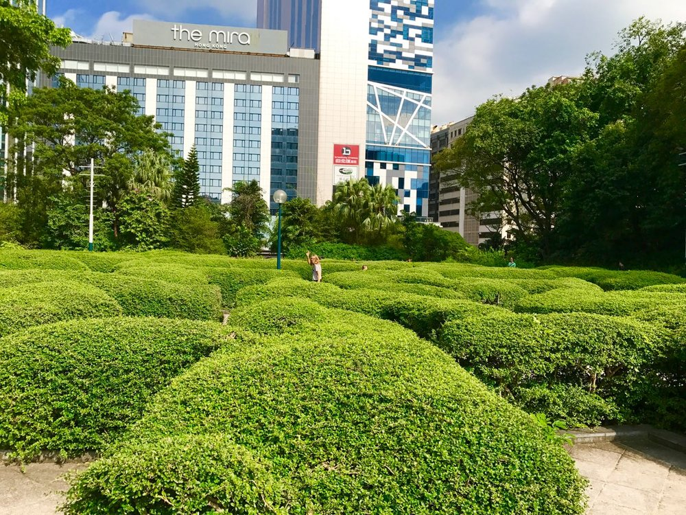 Autumn and Eden (if you look closely to the right of Autumn you can see Eden's head peeping above the foliage) run through the hedge maze at Kowloon Park.